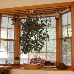 Zxaylis_bay_window_accessory_designed_for_hanging_plants_and_decor