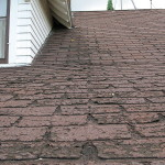 1200px-Faster_wear_of_asphalt_shingles_along_eaves