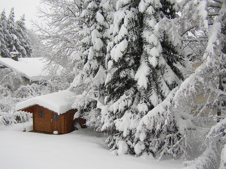 Preparing Your Garden for Winter? Don't wait until it is too late.