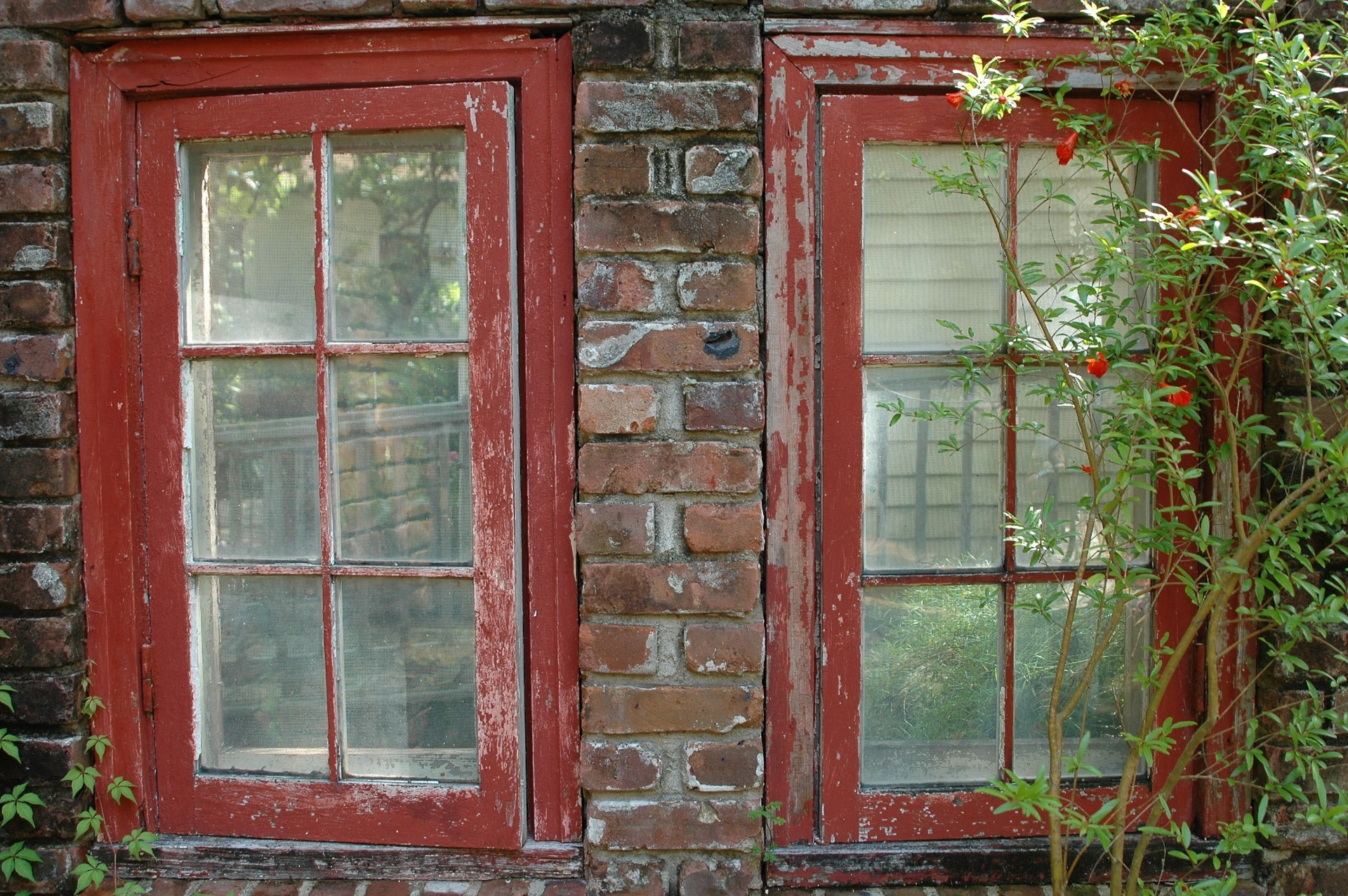 Worn Out Windows Repair Or Replace